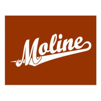 Moline script logo in white postcard