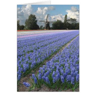 Molino de viento azul del campo de flores del tarjeta de felicitación
