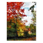 Molino distante en otoño postal