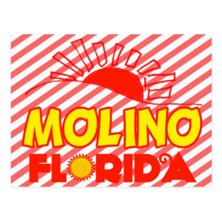 Molino, Florida Postcard