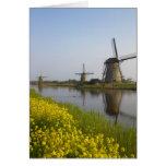 Molinoes de viento a lo largo del canal en Kinderd Felicitaciones