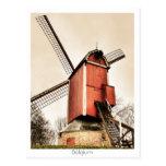 Molinoes de viento belgas tarjeta postal