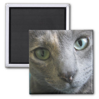 Mollie 2 Inch Square Magnet