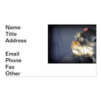 Mollie 2 plantillas de tarjetas personales