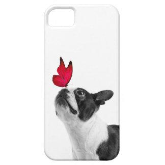Mollie mouse child Boston Terrier iPhone SE/5/5s Case