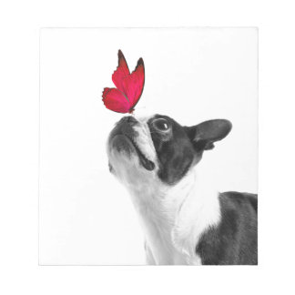 Mollie mouse child Boston Terrier Note Pad