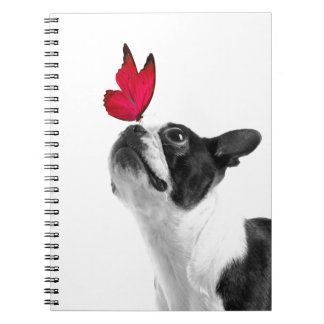 Mollie mouse child Boston Terrier Spiral Notebook