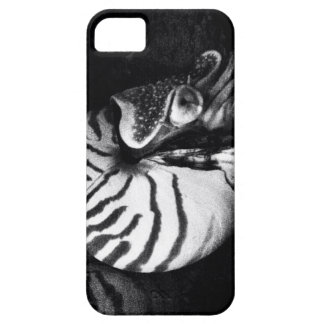Mollusk Barely There iPhone 5 Case