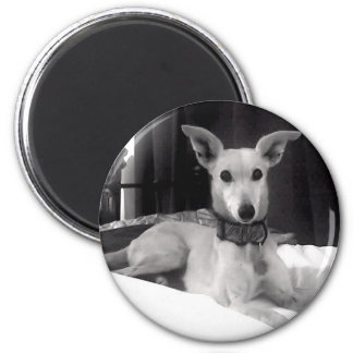 Molly Beautiful Monochrome 2 Inch Round Magnet
