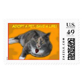 molly orange, Adopt a pet, save a life! Stamp