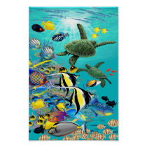 Molokini Cove Hawaiian Tropical Fish and Sea Turtl Poster
