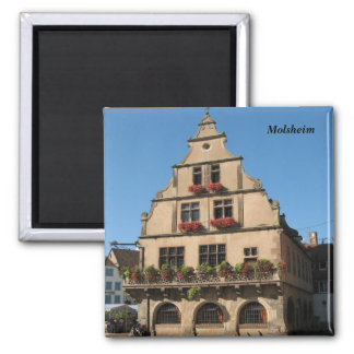 Molsheim - 2 inch square magnet
