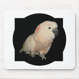 Moluccan Cockatoo Parrot Design Mouse Pad