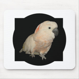 Moluccan Cockatoo Parrot Design Mouse Pad
