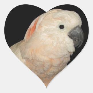 Moluccan Cockatoo Parrot Design Heart Stickers