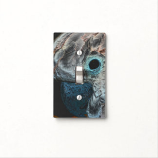 Moluccan Cockatoo Parrot Face Animal Art Light Switch Covers