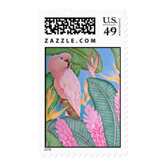 Moluccan Cockatoo Postage Stamp