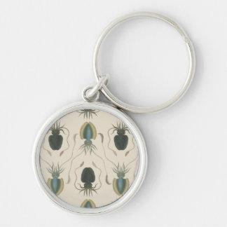 Moluscos del astrolabio (verde) llavero redondo plateado