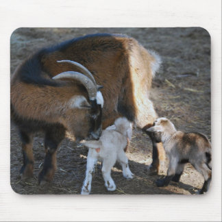 Mom and Babies Mouse Pad