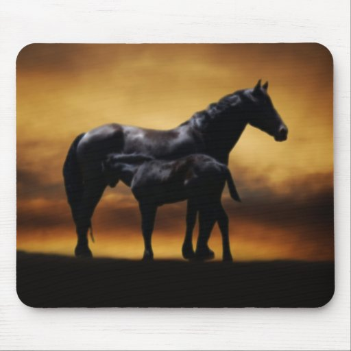 Mom and Baby colt Mouse Pad