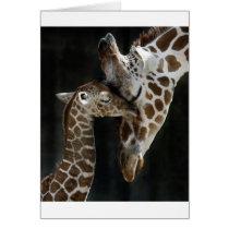 Mom and Baby Giraffe Cuddle Card