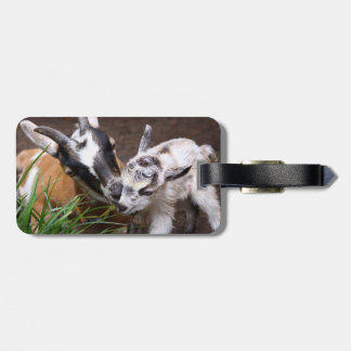 Mom and Baby Goat Tags For Bags