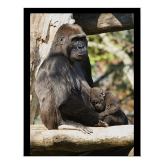 Mom and baby gorilla 2, posters