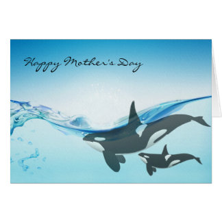 Mom and Baby Orca Whales Mother's Day Card