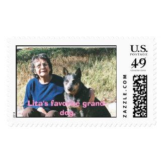 Mom and Blue 01, Lita's favorite grand-dog. Postage