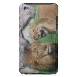 Mom and Dad Lion  iTouch Case iPod Case-Mate Case