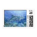Mom & Baby Dolphins Postage