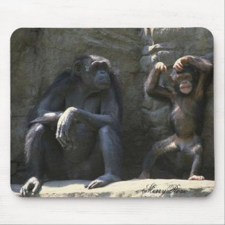 Mom & Baby Monkey Mouse Pad