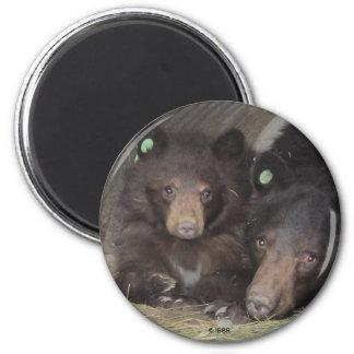 Mom & cub 2013 Round Magnet