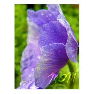 Mom Flower Postcard