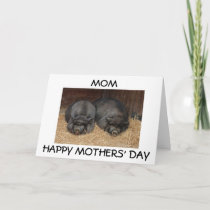 """MOM, HAPPY MOTHERS' DAY"" FROM SON OR DAUGHTER CARD"