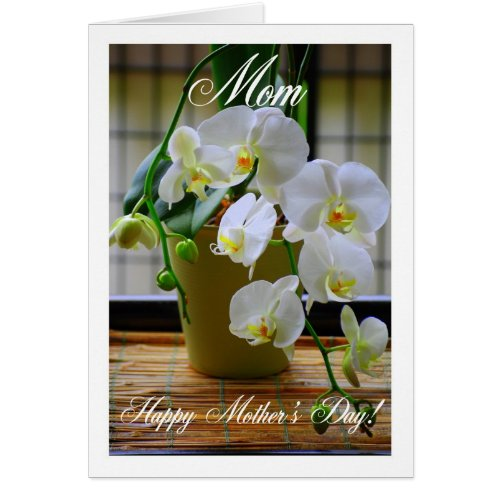 Mom, Happy Mother's Day, White Orchids Card