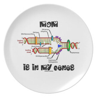 Mom Is In My Genes (DNA Replication) Melamine Plate
