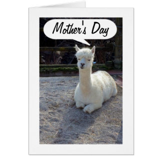 MOM-LLAMA says HAPPY MOTHERS DAY=AWESOME MOM Card