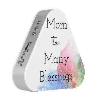 Mom To Many Blessings Speaker