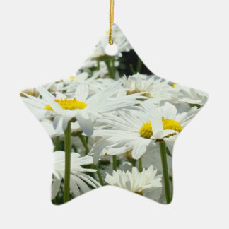 Mom You re Our Sunshine and Star ornament gifts