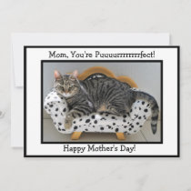 Mom, You're Puurrfect! Tiger Cat Mother's Day Holiday Card