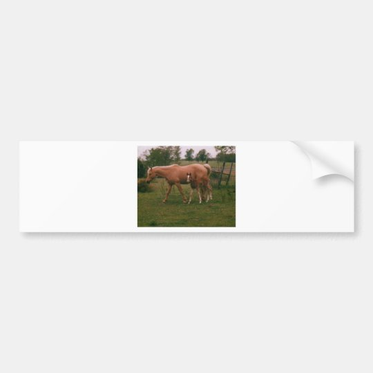 Moma horse and baby horse bumper sticker