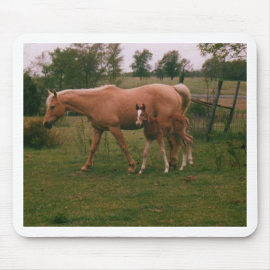 Moma horse and baby horse mouse pad