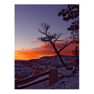 Momentos antes de salida del sol en el parque naci tarjetas postales