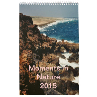 Moments in Nature 2015 Wall Calendars