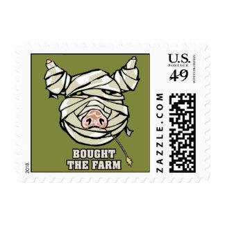 Momia del cerdo