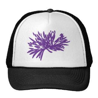 Momia púrpura oscura gorras