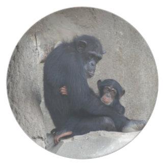Momia y bebé del chimpancé platos para fiestas