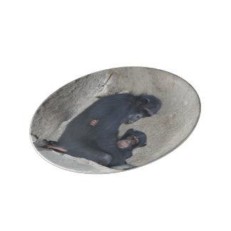 Momia y bebé del chimpancé platos de cerámica