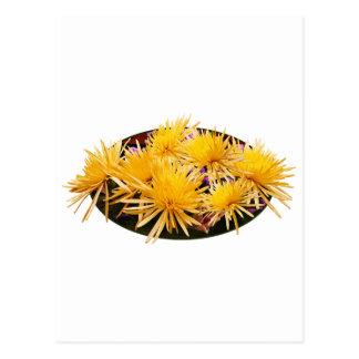 Momias amarillas de la araña tarjetas postales